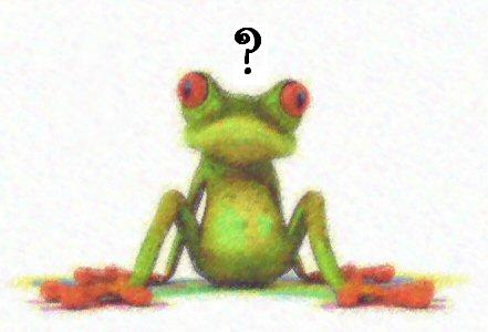 Image of confused-looking frog